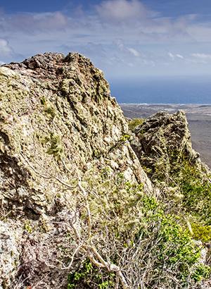 Christoffelpark Curacao; berg beklimmen