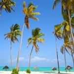 Picture perfect! De mooiste stranden op Zanzibar