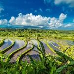 The Best of Bali: handige travelguide voor beginners