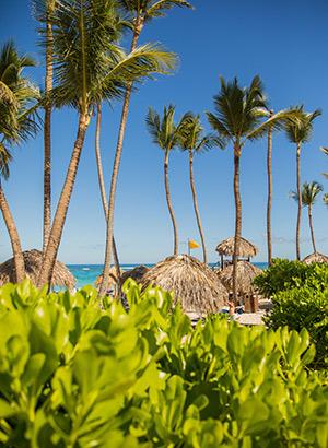 Zon in mei: Caraïben