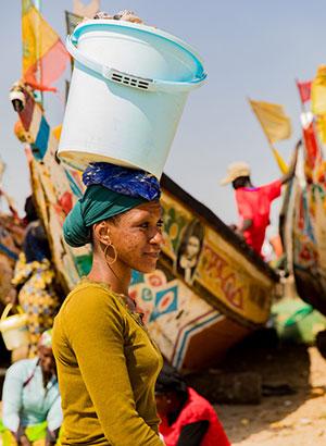 Doen in Gambia; tour zuiden
