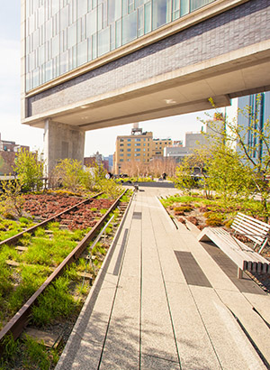 Reisgids New York: Highline