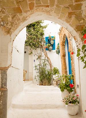 Dagtripjes & excursies Hammamet: Sidi bou Saïd