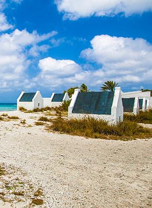 Redenen Bonaire winterzon: slavernij