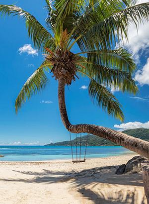 Redenen Seychellen bucketlist: strand