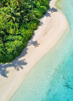 Bloet voeten bestemmingen: Malediven