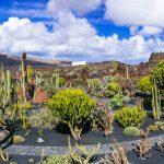 Deze 7 dingen moet je écht doen op Lanzarote