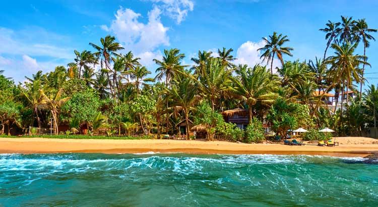 Goudgele stranden-alert! De mooiste badplaatsen van Sri Lanka