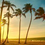 100% laidback garantie in het Braziliaanse Cumbuco