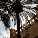 Afvinken maar! Doen in Palma de Mallorca