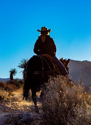 Dagjes uit & excursies vanuit Las Vegas: paardrijden