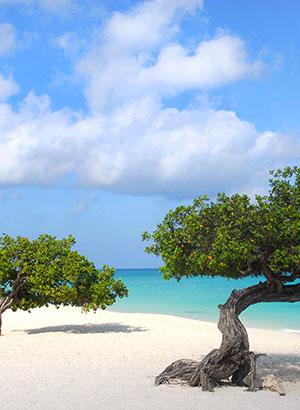 Mooiste stranden Aruba: Eagle Beach
