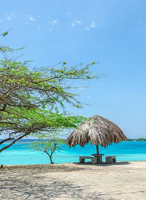 Mooiste stranden Aruba