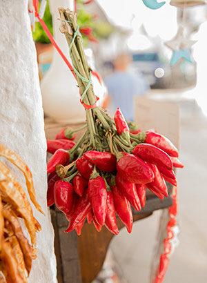 Doen in Alberobello, Puglia: lokale specialiteiten proeven
