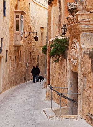 Wat te doen Malta: Mdina