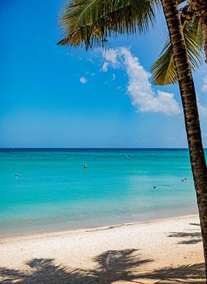 Weetjes Mauritius: strand