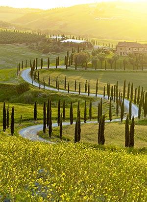 Autovakantie bestemmingen: Toscane