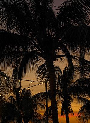Leukste restaurants Curaçao: Zest