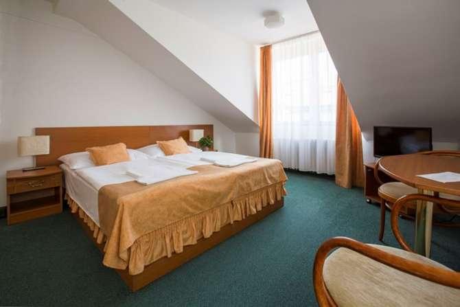 Hotel Novomestsky Praag