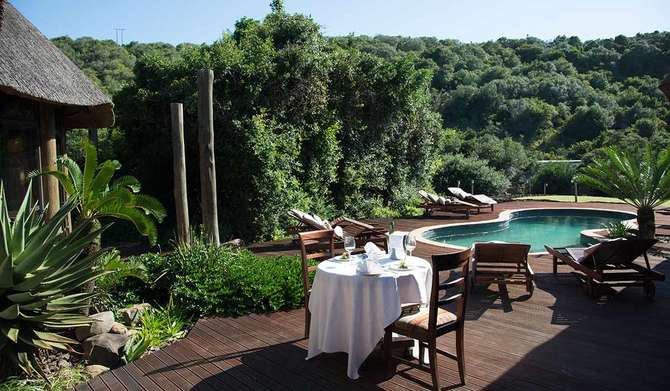 Mpongo Private Game Reserve Newlands