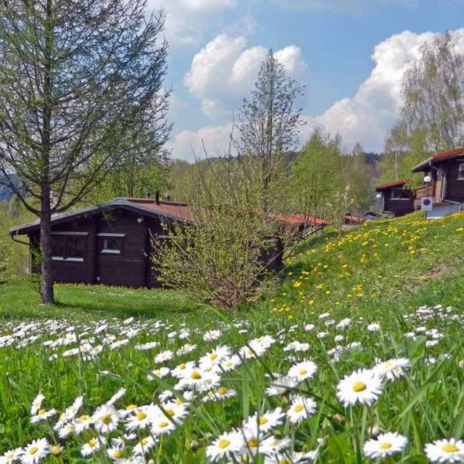 Werrapark Resort Ferienhausanlage Am Sommerberg Masserberg