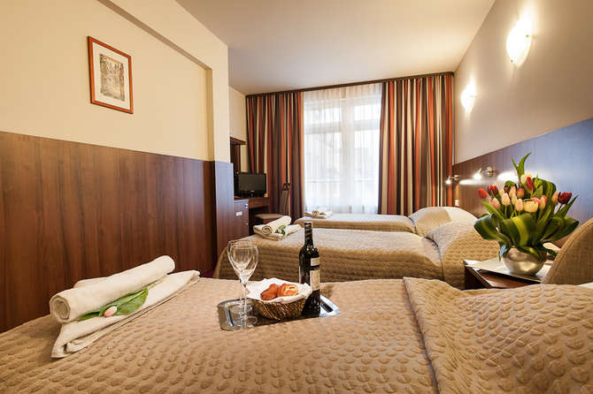 Hotel Alexander Krakau